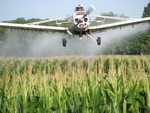 Crop Dusting by Ronald Barron