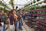 Dr. Sams Greenhouse Management Class by John Cummins