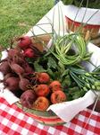 Beets at the Market
