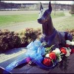 War Dog Memorial