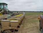 12-Row Cotton Planter