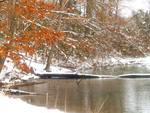 Winter Snow on the Lake