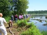 A Stroll to Beaver Dam