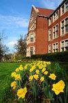 Morgan Hall in March