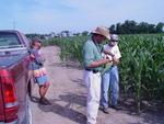 Examining Worm Feed on Corn