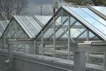 High-tech UTIA Greenhouse
