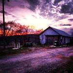 Dairy Sunset