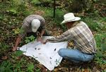 Stanley Buck and David Paulsen Sampling Insects