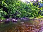 Second Creek