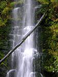 Melbourne Waterfall by Michelle Baldwin