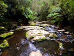 Freshwater Creek by Michelle Baldwin
